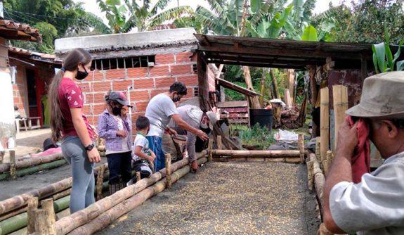 Federación de Cafeteros construye germinador comunitario en el municipio de Jericó