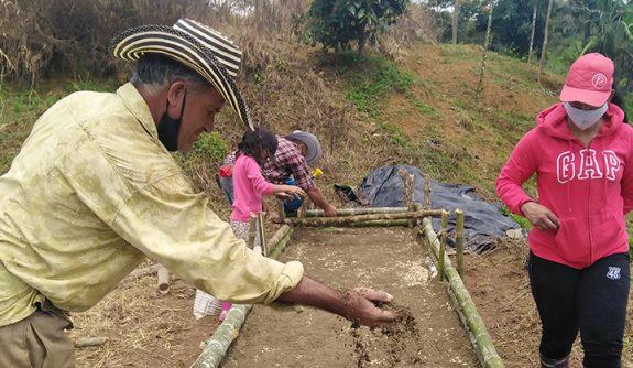 Federación de Cafeteros construye germinador comunitario en el municipio de Donmatías